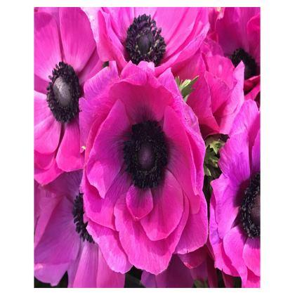 Trays - Fuchsia Anemones