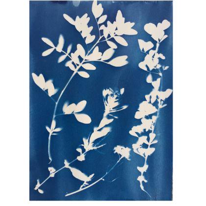 ZYANO PRINT Ladies-bomber-jacket