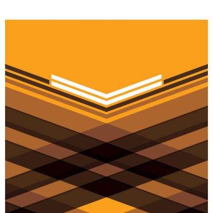 Espadrilles Brown Stripes