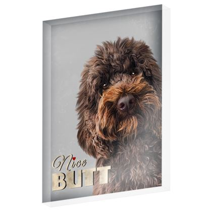 Nice butt chocolate dog