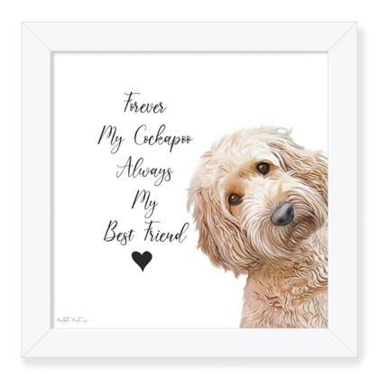 Cream cockapoo framed art print