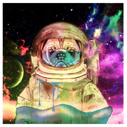 Astronault Pug COLOR Suitcase