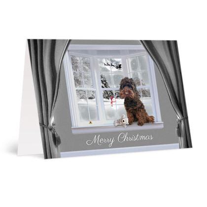 Chocolate dog christmas card