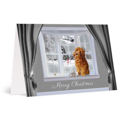 Red dog christmas card