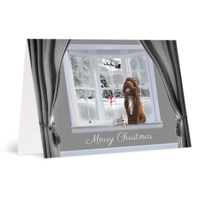 Chocolate tuxedo Christmas card