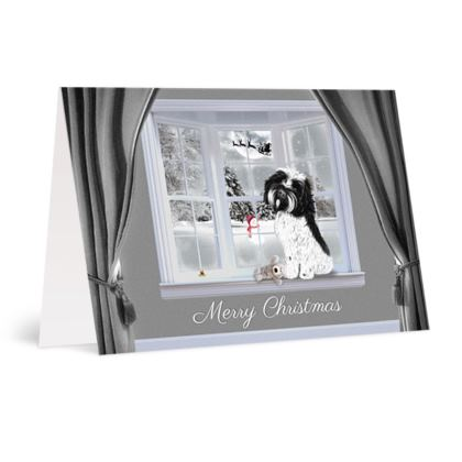 Black & white dog christmas card