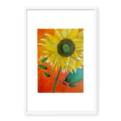Sunflower Framed Art Prints