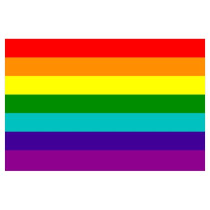 1978-1979 Pride Flag
