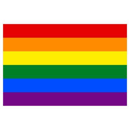 1979+ Pride Flag