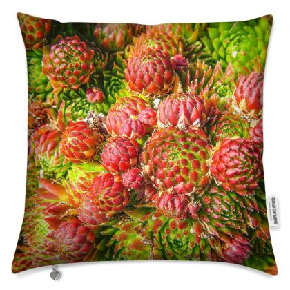 Forest Moss Cushion