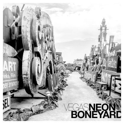 Neon Boneyard Cushion