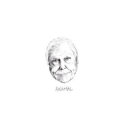 "David Attenborough ""Animal"" T Shirt - MENS"
