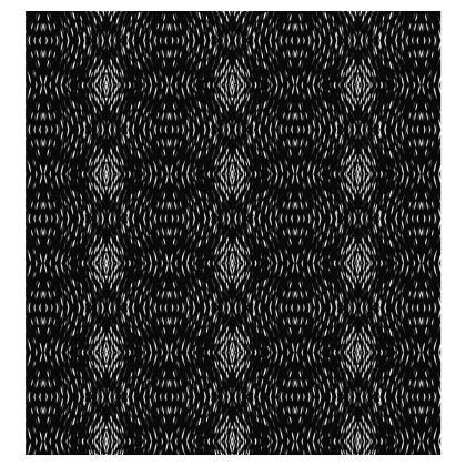 Black Illusion Ladies T Shirt