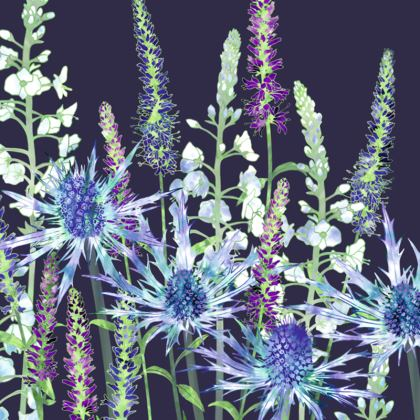 Enchanting Evenings Coasters