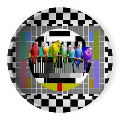 Test Card Budgies Ornamental Bowl