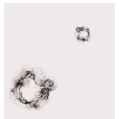 Soft Circle - T-shirt soft grey (Women)