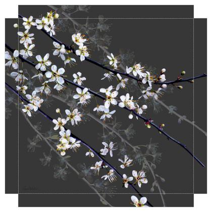 Blackthorn Blossom Canvas Print. Size 40cm x 40cm