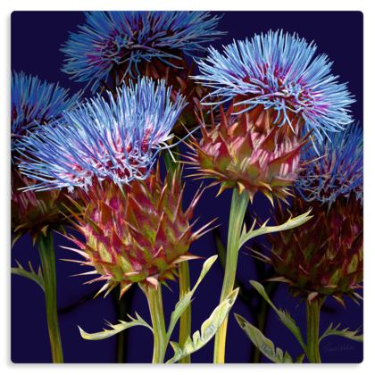 "Scottish Thistle Metal Print. Size 12"" x 12"""