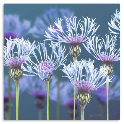 "Centaurea Metal Print. Size 12"" x 12"""