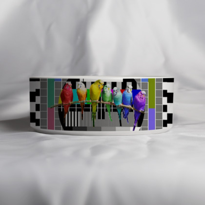 Test Card and Rainbow Budgies Pet Bowl
