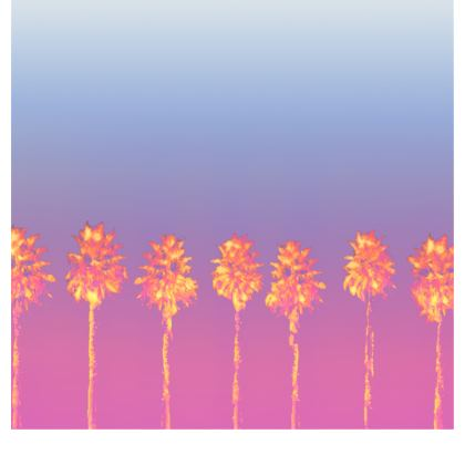 Palm Trees Collection Zip Top Handbag