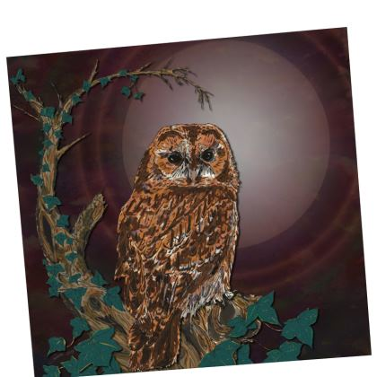 Tawny Owl Placemats