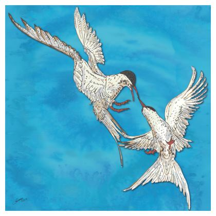 Arctic Terns Coasters