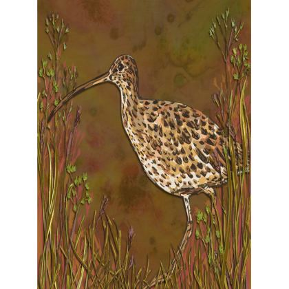 Curlew Tray