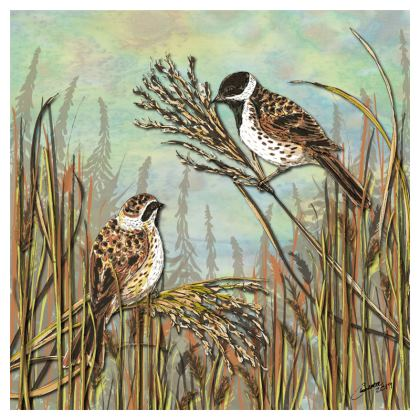 Reed Buntings Coasters