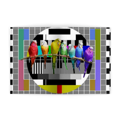 Test Card Budgies Passport Cover