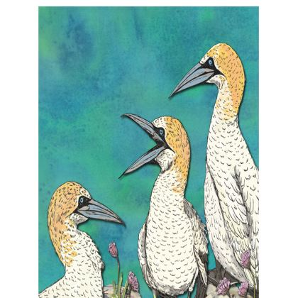 Gannets Tray