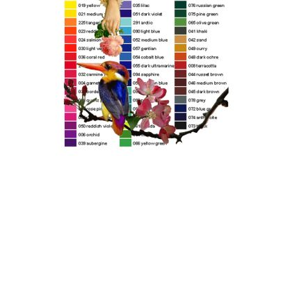 Kingfisher Colour Chart Postcards