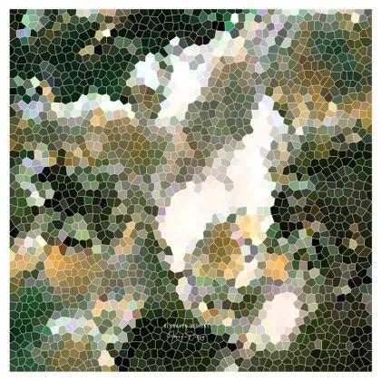 Shoulder Bag Hex Design