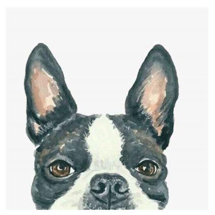 Boston Terrier Cushions