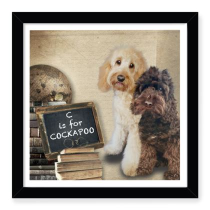 """C is for COCKAPOO 12""""x12"""" fully framed print"""