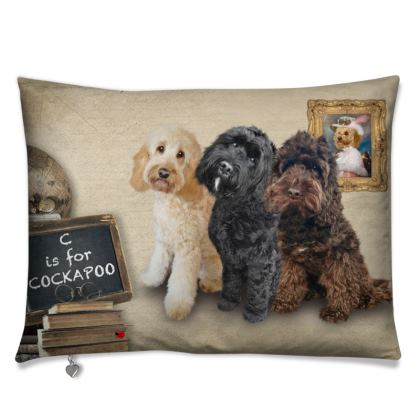 C is for COCKAPOO Cushions