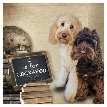 C is for Cockapoo Coasters