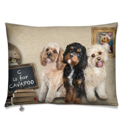 C is for CAVAPOO Cushions