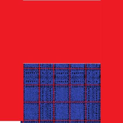 Men's Red, Blue and Black Box Pattern Design Swim Shorts ©
