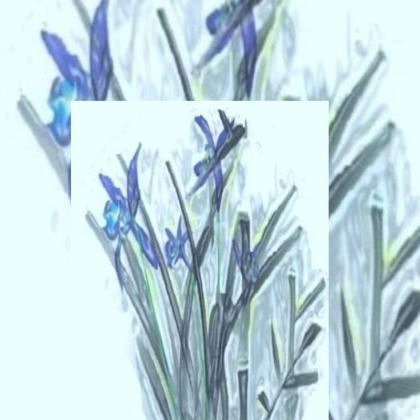 Elegant Blue Orchid Design Glass Case ©