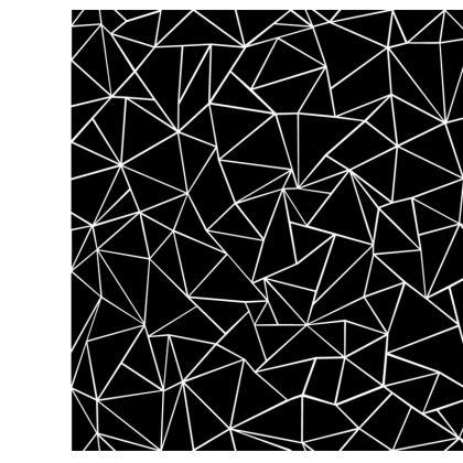 Ab Outline Black Flip Flop