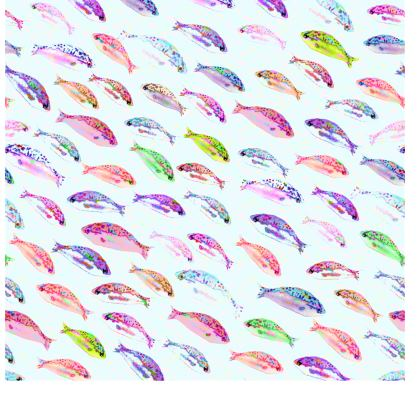 Tropical Fish Collection Tray