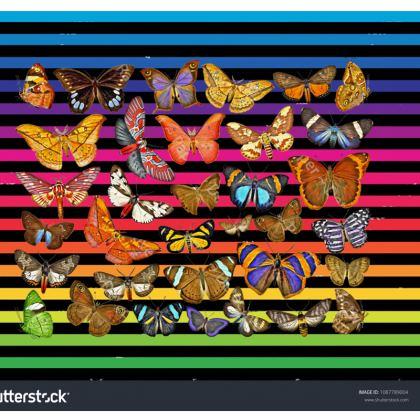Butterfly Rainbow Double Deckchair