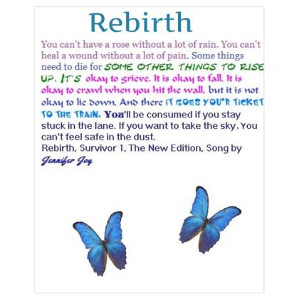 Rebirth, Survivor 1, The New Edition, The Song