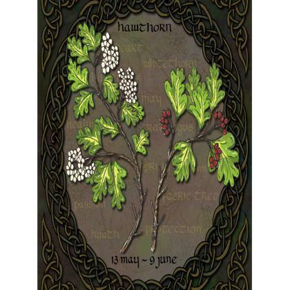 Tree Calendar Hawthorn Tray