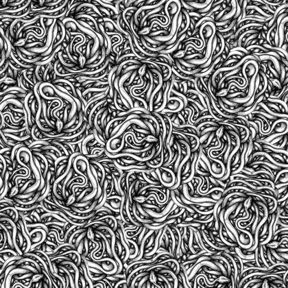 Snakes Kimono