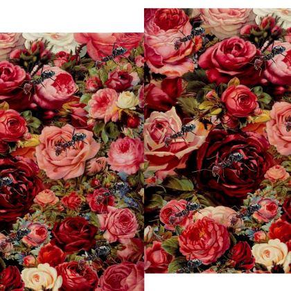 Ants n Roses Kimono