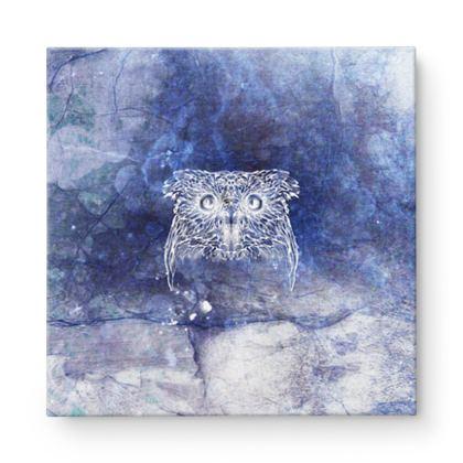 Owl Xray Square Canvas