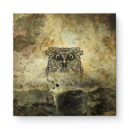 Owl Square Canvas