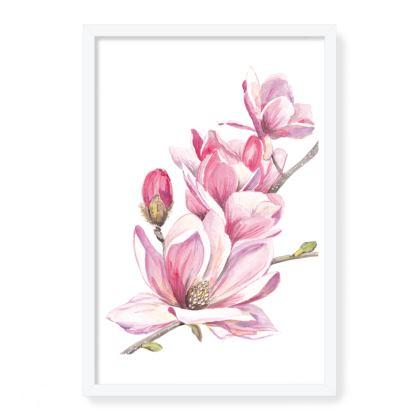 Magnolia Framed Art Print